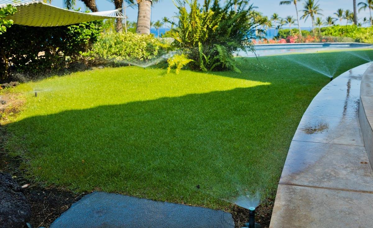 Irrigation System Efficiency